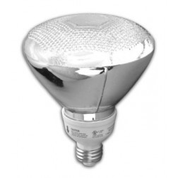 TCP 2P3819-27 19 Watt CFL PAR38 Flood Light