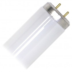 Westinghouse 05660 - F20T12/CW T12 Fluorescent Tube 20W 41K