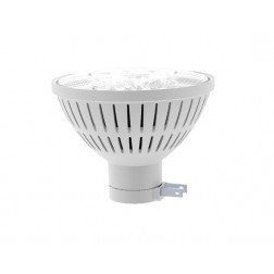 200 Watt PAR46 - 17W LED Retrofit for PAR 46 Side Prong Lamps