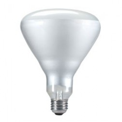 250R40/CL Teflon 250W BR40 Incandescent Flood Reflector