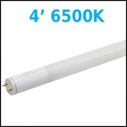 4 ft LED T8 6500K Temperature