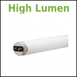 Linear Fluorescent High Lumen 4 Foot T8