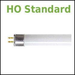 High Output 4' GE Ecolux T5 fluorescent tubes