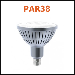 Buy Solais PAR38 Flood LED Screw In Bulbs