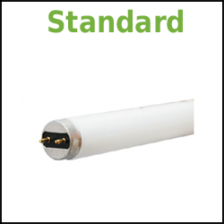 Standard Fluorescent Linear T8 32W 4ft