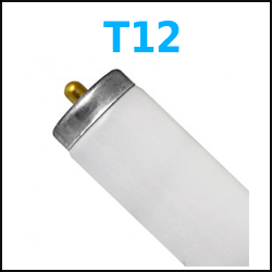 T12 Fluorescent Lamps 4 foot 8 foot case quantity