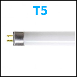 T5 Fluorescent Lamps 2', 3', or 4 foot