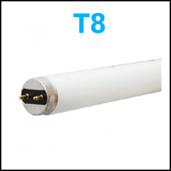 T8 Fluorescent Lamps 2 pin 4 foot 8 foot